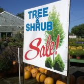 Gardenland, Gardenland USA, Tree & Shrub Sale, Plant Nursery