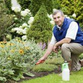 Gardenland, Gardenland USA, Gardening, Plant Nursery