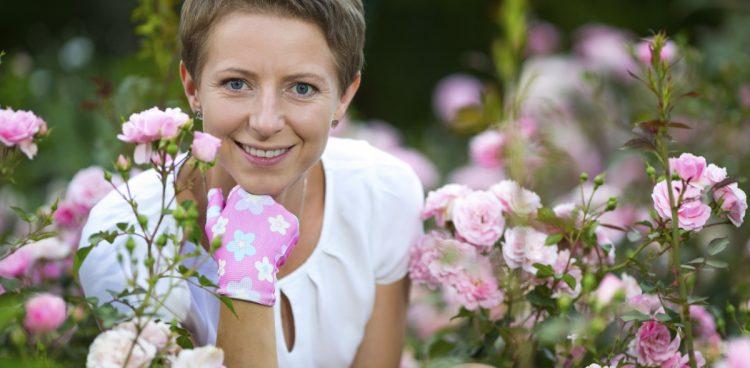 Gardenland, Gardenland USA, Pink Tea Roses